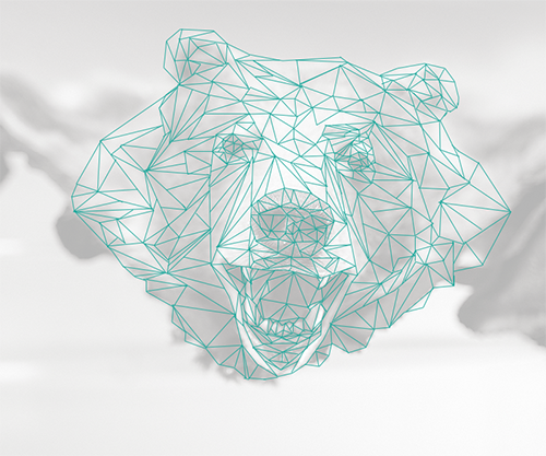 Depiction of a bear's head in a faux low poly style created by drawing the polygonal lines. The stock image used is faded underneath to showcase the reference used.